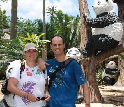 beobachtet vom Pandabären