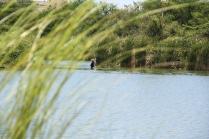 gefischt wird immer und überall - hier von innerhalb des Sees