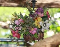 Blumen, überall...