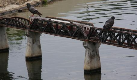 die Brücke am Quai - sie wird von Tauben bewacht