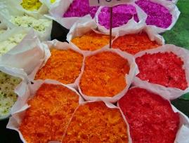 schöne Farben, am Flowermarket
