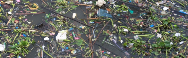 Im Chao Phraya schwimmt so einiges rum - überall Plastik, eine Pest, nicht nur in Thailand