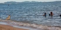 Hund und Thai, abends am Strand