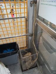 Das arme Huhn! Die Chinesen haben es nicht so mit dem Tierschutz. Dieses Huhn wird tatsächlich an einem Strick befestigt und in Richtung der Löwen geworfen - dann aber wieder rein in den Bus gehieft, bevor der Löwe es fassen kann - trauriges Schauspiel
