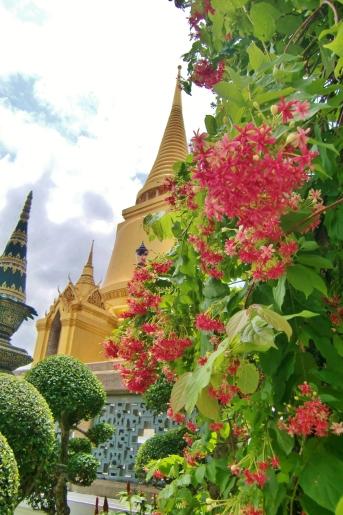 schöner Himmel, Gold und bunte Pflanzen - eine schöne Mischung