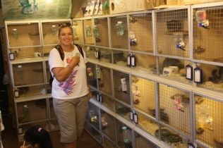 Das war eine Überraschung: ein Chinchilla-Zoogeschäft in Shanghai - das war natürlich was für uns :-)