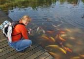 Wie bei uns zuhause am Teich :-0