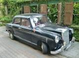 cooler Wagen