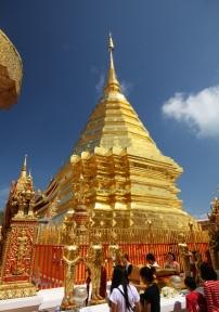 Wahnsinn - goldener Wat und blauer Himmel - das sieht toll aus!