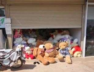 Teddybären auf der Flucht