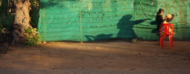 lustiges Schattenspiel (fotografiert aus dem Rikscha)