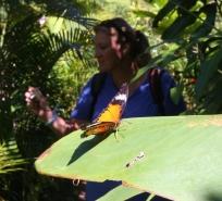 """kurzer Abstecher in den """"Butterfly Park"""""""
