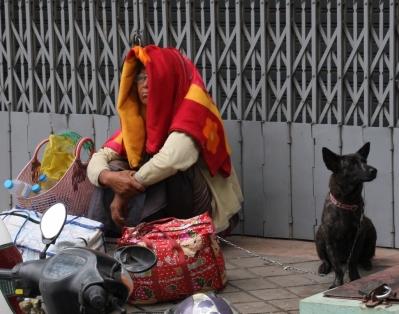 Ein drolliges Bild von Hund und Frauchen