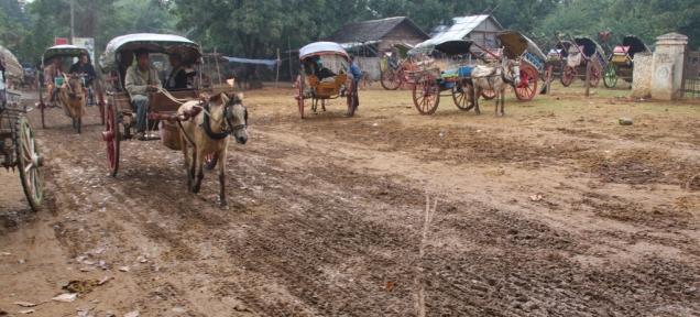 Pferdekutschen - zuweilen noch ein gerne genutztes Fahrgerät (vor allem für Touristen)