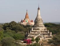 Die Ebene von Bagan - die ersten Stupas