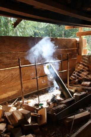 Gekocht wird über dem Feuer - in Bambusrohren (alles, was wir an Gemüse und Kräutern serviert bekamen, haben wir aus dem Dschungel mitgebracht)