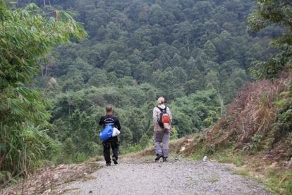 Unsere Dschungel-Tour (noch auf einem Weg, später dann so richtig durch die Wildnis, nur mit Führer und Machete)