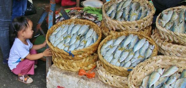 und Fisch