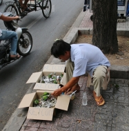 Wieder einer, der etwas am Straßenrand zu verkaufen hat: Diesmal sind es kleine (total putzige) Papageien.