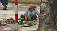 """Es ist """"Tamarinden-Zeit"""" und wer die im Garten wachsen hat, verkauft sie natürlich."""