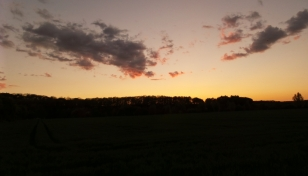 Auch in Deutschland gibt es übrigens schöne Sonnenuntergänge (OK, mit Angkor Wat kann das dann doch nicht mithalten, aber immerhin).