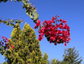Klare Luft, tolles Wetter, tolle Farben!