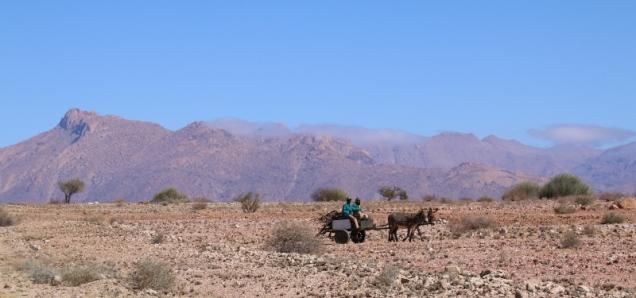 Eselkarren in Mitten der Wüste.