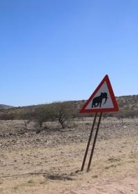 Vorsicht, Elefanten!