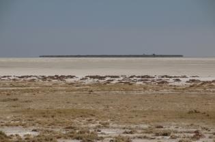 Auch eine Salzpfanne kann eine Insel haben (die nun wieder hat allerdings vor sehr langer Zeit das letzte Mal Wasser gesehen).