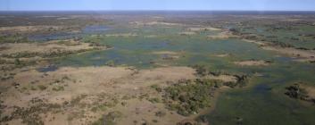 Weit und farbenfroh, das Okavango Delta.