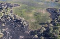 Buschbrände hinterlassen kurzfristig ihre Spuren.