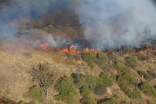 Buschbrände - wir sehen viele während unseres Fluges.