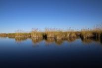 """Wieder tolle Landschaft. Das Okavango Delta """"von unten""""."""