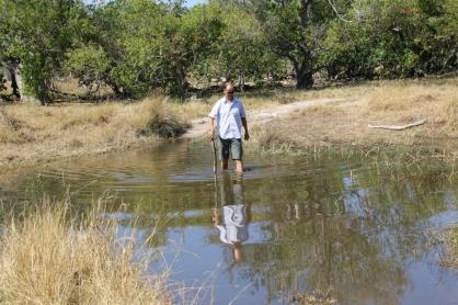 Die Wege in Moremi sind abenteuerlich - der Sand ist schon eine echte Herausforderung, Wasser ist etwas unheimlich ... und dennoch müssen wir da durch - Carsten prüft den Übergang und hofft, das kein Krokodil in der Nähe ist ;-)