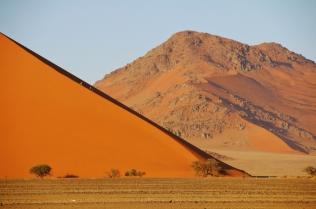 Tolle Farben und hohe Dünen, bis zu 300 Meter hoch.