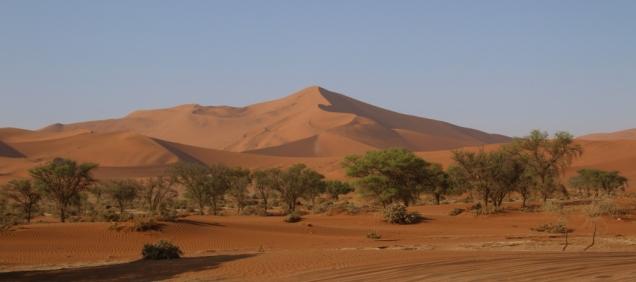 Eine der zahlreichen Dünen, sehr imposant.