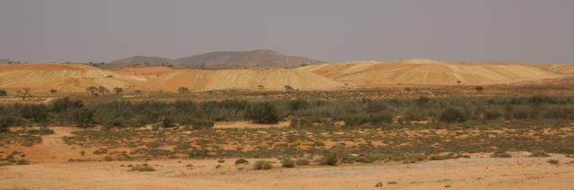 In der Wüstenregion in Richtung Namibia wird das Farbspiel wieder bunter.