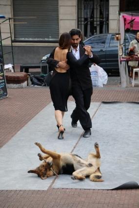 """Die """"Kombination"""": Es kann schon mal sein, dass die Themen """"Tango"""" und """"Hund"""" sich vermischen ;-)"""