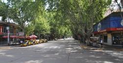 Mendoza, eine tolle kleine Stadt - alle Straßen sind Alleen - tolle Atmosphäre!