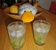 """Da trinkt sogar unsere """"Reise-Ente"""" (ist unsere """"Reserve-Ente"""") Caipirinha :-)"""