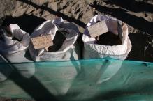 Schildkröten in einer Aufzuchtstation (das ist der Brutkasten)
