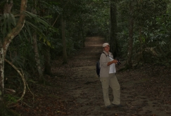 Heike im Dschungel